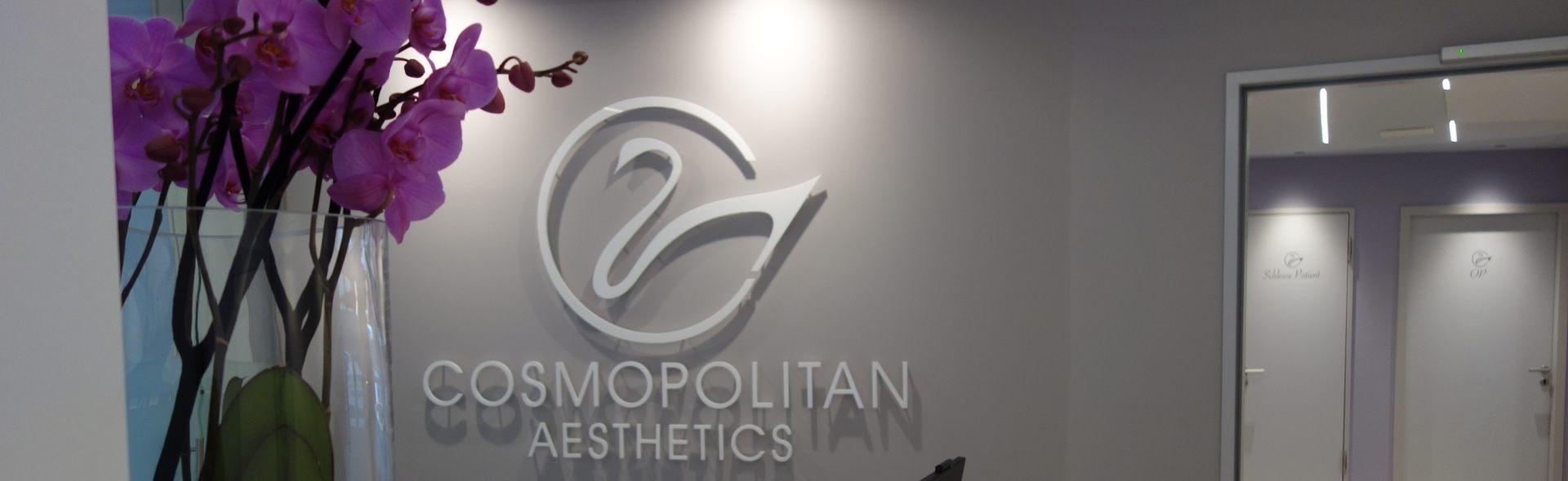 Cosmopolitan Aesthetics